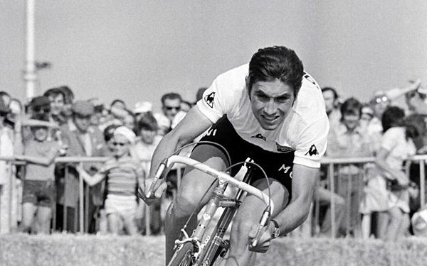 EddyMerckx.jpg