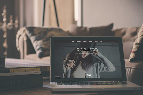 Website design Robusto magazine