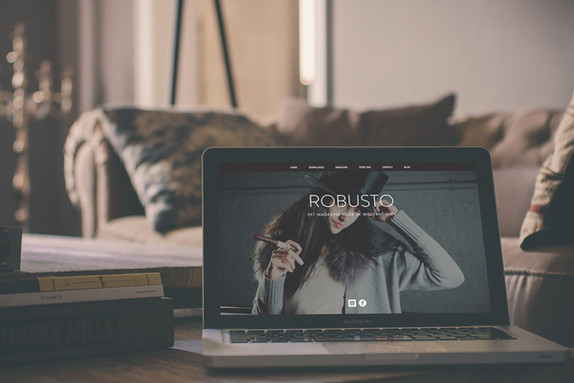 Website design Robusto magazine