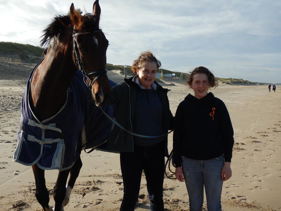 paard uitlaten op het strand