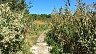 A Trip on the Cape Cod Museum Trail