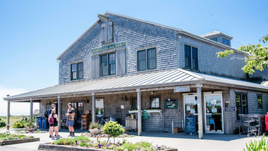 Exploring Bartlett's Farm on Nantucket