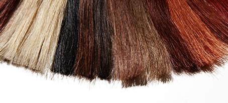 Un pequeño repaso por los artículos de peluquería