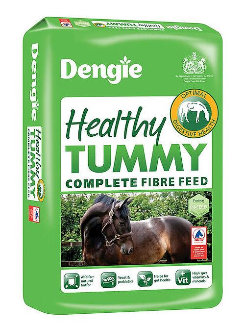 Dengie Healthy Tummy 20kg