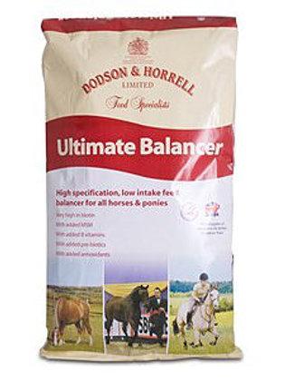 Dodson & Horrell Ultimate Balancer 20kg