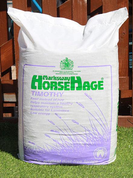 HorseHage Purple Timothy