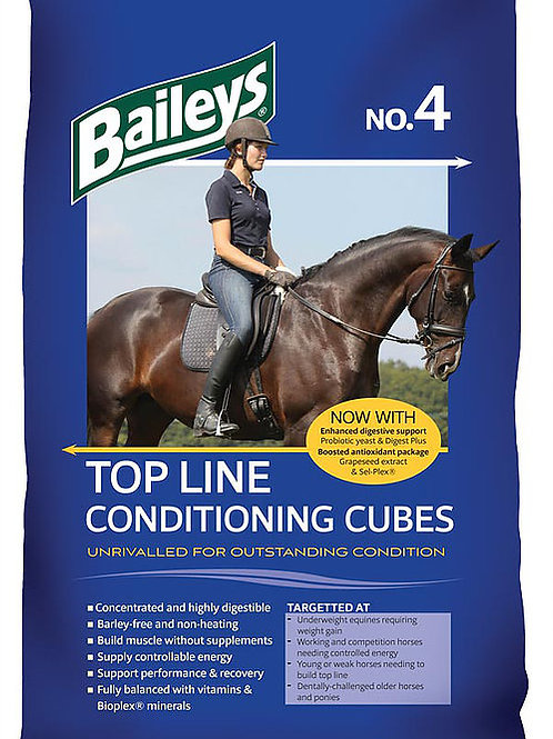 Baileys Top line Conditioning cubes no.4