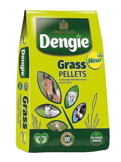 Dengie Grass Pellets 20kg