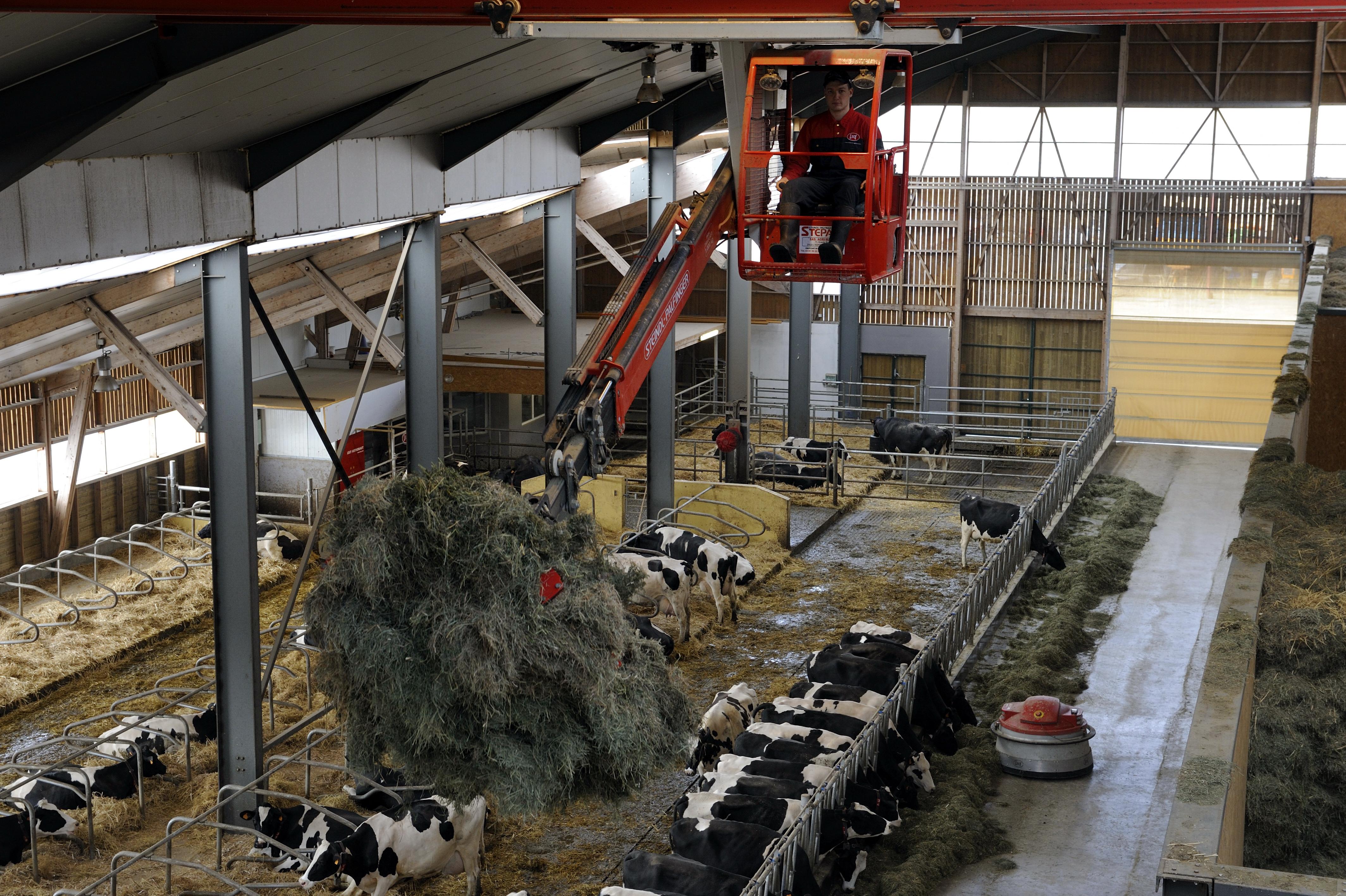 Vue intérieur du bâtiment d'élevage