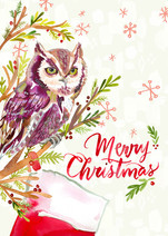 Red Screech Owl Merry Christmas.jpg