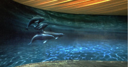 Kitsch Dolphins