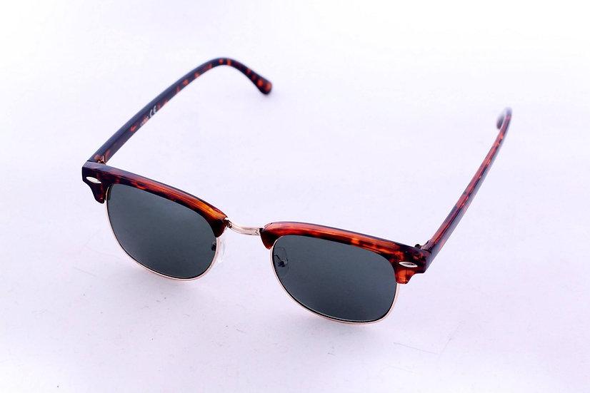 Wayfarer Aviator Round Classic Frames sunglasses