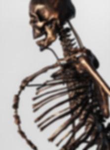 étude de la santé, anatomie, neurologie, séminaire, formation, compétent, squelette, corps humain