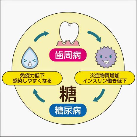 ~歯周病は癌、糖尿病のリスクを高める~稲澤陽三です。