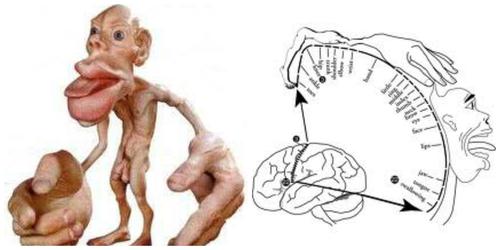 噛むことの重要性のイメージ