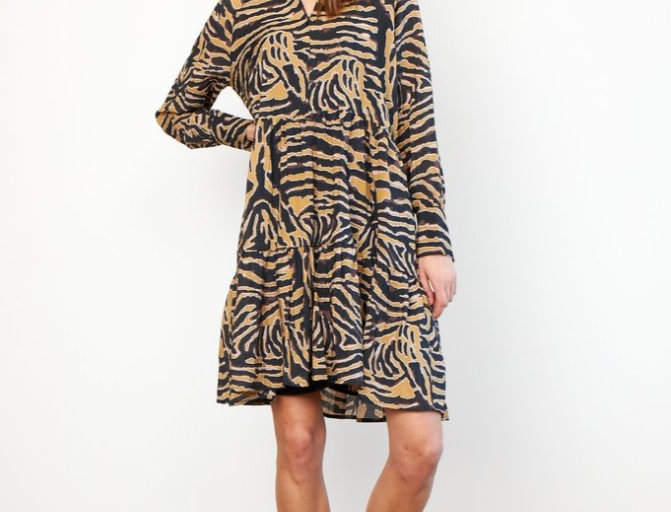 SECOND FEMALE - Zebraly Dress