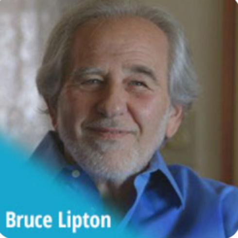 Bewusstseins-Kino / Dr. Bruce Lipton