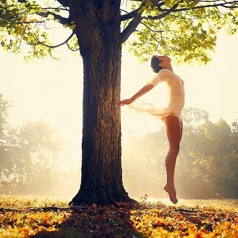 Dein Licht, deine Lebensenergie - Qi Sein