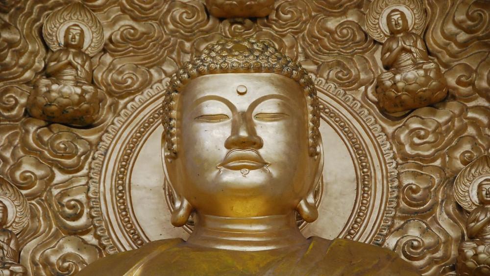 Lichtbotschaften sind geführte Meditationen, die dich in das goldene Bewusstsein führen.