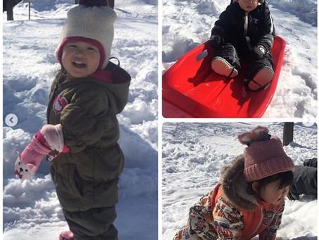 【南郷】今年の冬は例年より気温が高めで雪も少ないので、0歳児の子どもたちも毎日ゆったりとお散歩をし、雪の感触を楽しめています。【南郷おたより3月号】