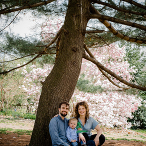 Beautiful spring photos in Prospect Park, Brooklyn