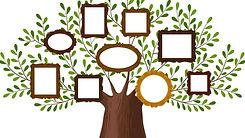 50 Family Tree.jpg