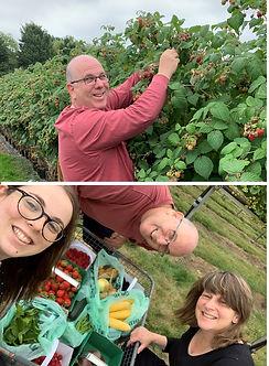 58- Fruit picking.jpg