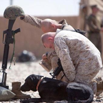 Sgt_Yeager_Spotlight.jpg