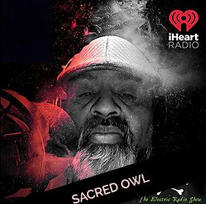 sacred-owl.jpg