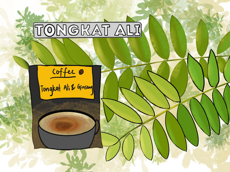 Eurycoma longifolia: Natural energy and libido booster (Infographic)