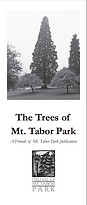 Tree Guide Cover