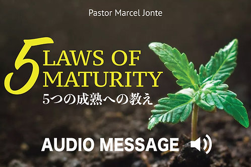 5 Laws of Maturity / 5つの成熟への教え