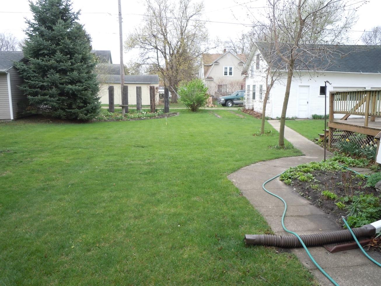 A Yard DSCN6861