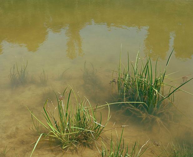 Quarry_Lake_srgb.jpg
