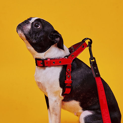 EASY FIT HARNESS° RED [SAMO ONDOG]