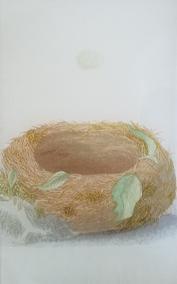 Nest #1 O-194
