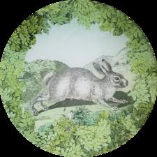 Woodland White Rabbit W-7