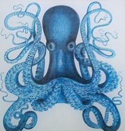 Blue Octopus S-154