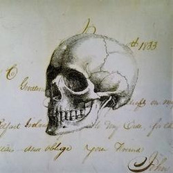 Skull 1833 Mi-67