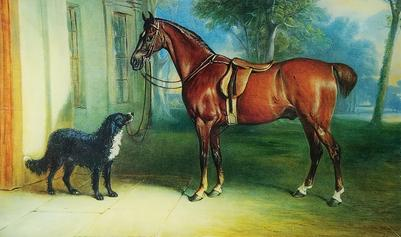 Brown Horse with Dog H-230