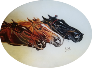 3 Horse Heads H-35