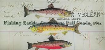 3 Trout over Invoice F-1