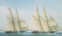 The Great Yacht Race N-14