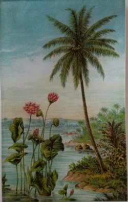Palm w/ Flowers  FL-71