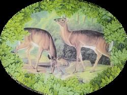 2 Deer Drinking W-20