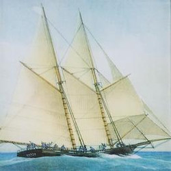 Single Sailboat N-10