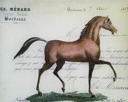 Bordeaux Horse H-321