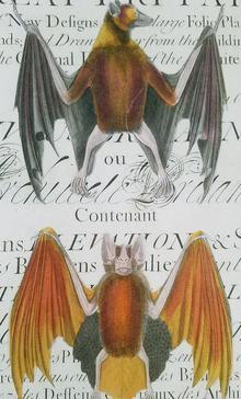 Two Bats Over Script A-111