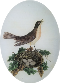 The Nightingale with Nest O-132