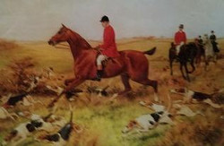Hunt with Many Hounds H-206